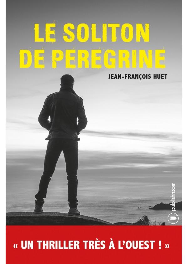 """Le Soliton de Peregrine"" de Jean-François Huet"
